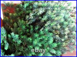 Vintage Evergreen 6 Ft. Plastic Christmas Tree Aluminum Specialty Manitowoc, Wi